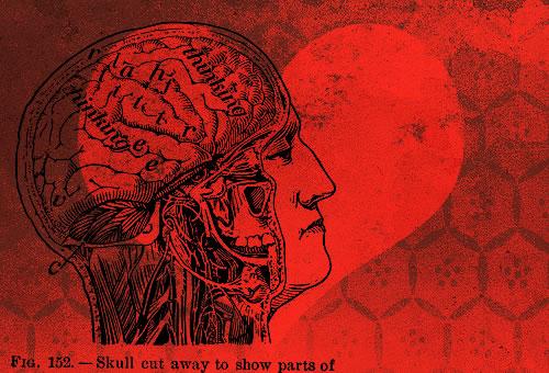 Head-heart